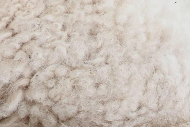 Rohstoff-Wolle